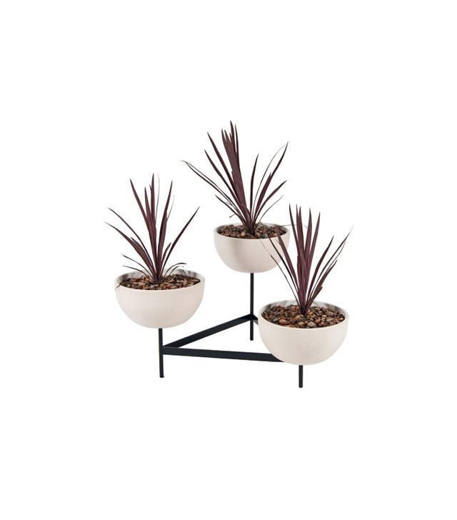 Modernica Case Study 3 Bowl Plant Stand