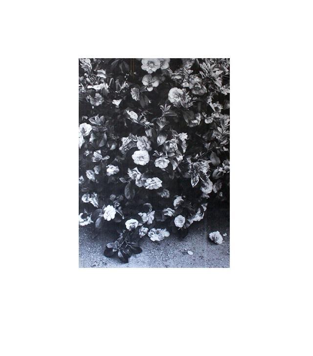 Etsy Flowers Poster