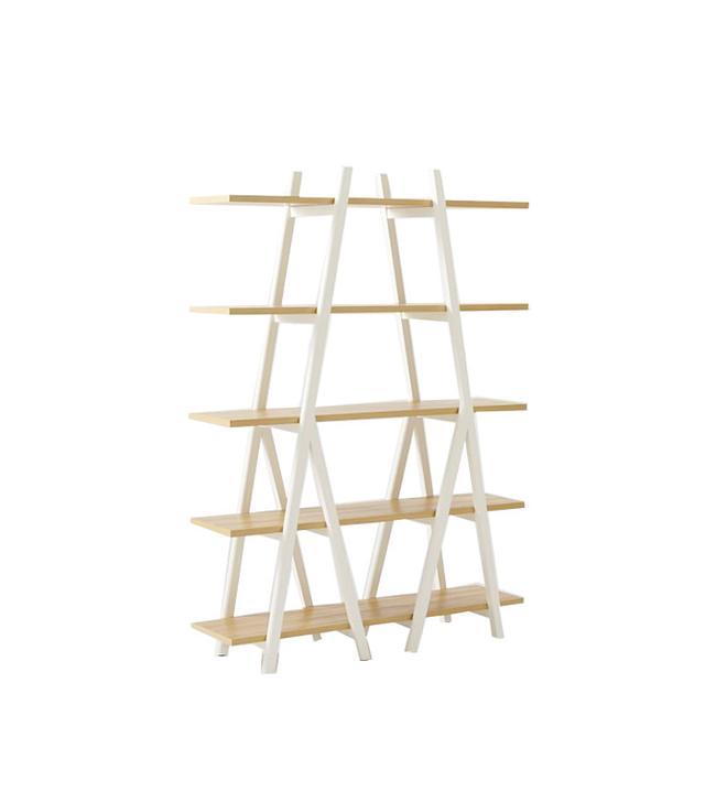 West Elm Ladder and Bookshelf