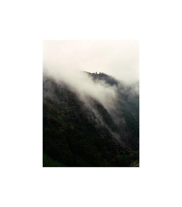 """Fog Print"" by Debbie Carlos"