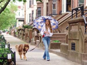 Amanda Seyfried's Dog, Finn, Is the Ultimate Best Friend