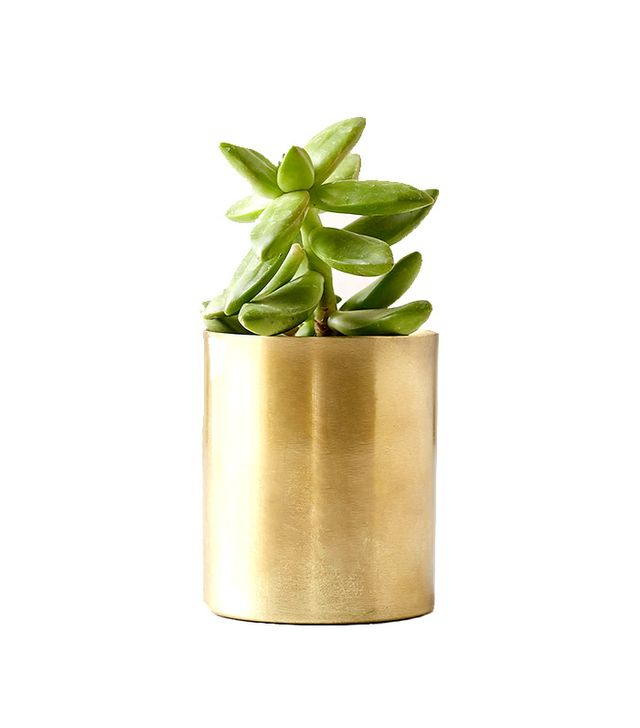 Urban Outfitters Mod Metal Small Planter
