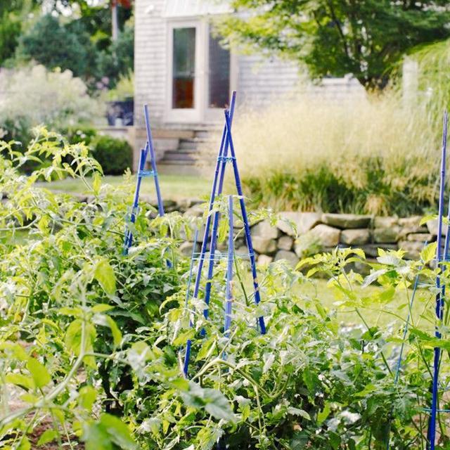 12 Genius Gardening Tricks to Try This Spring