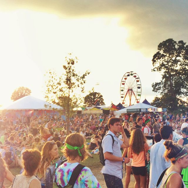 The Must-See Bonnaroo Shows for Every Type of Music Fan