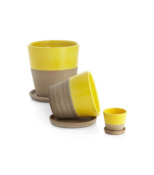 Crate & Barrel Carnivale Yellow Planters