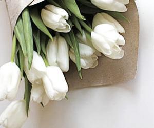 Ask Estee: Foolproof Flowers