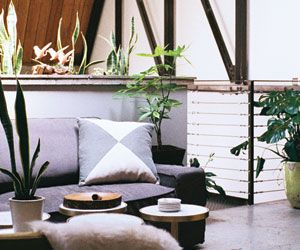 Nailed It: Bringing the Outdoors In
