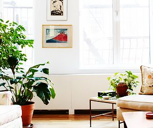 Loft Living at Its Simplest