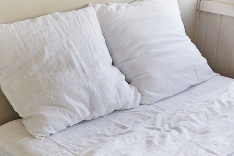 IN BED 100% Linen Euro Pillowslip Set
