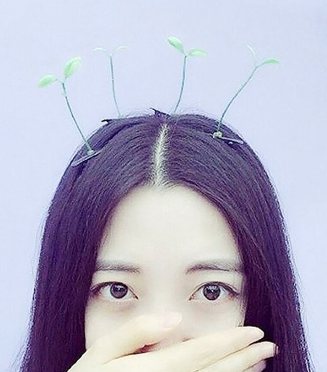 Originally fromBeijing, this trend entails women wearing bean sprouts in their hair in the fashion of a headband. If done correctly, the sprouts, which are usually attached to hairclips,...