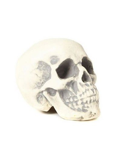 Typo Foam Skull