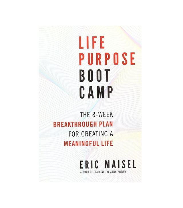 Life Purpose Boot Camp by Eric Maisel