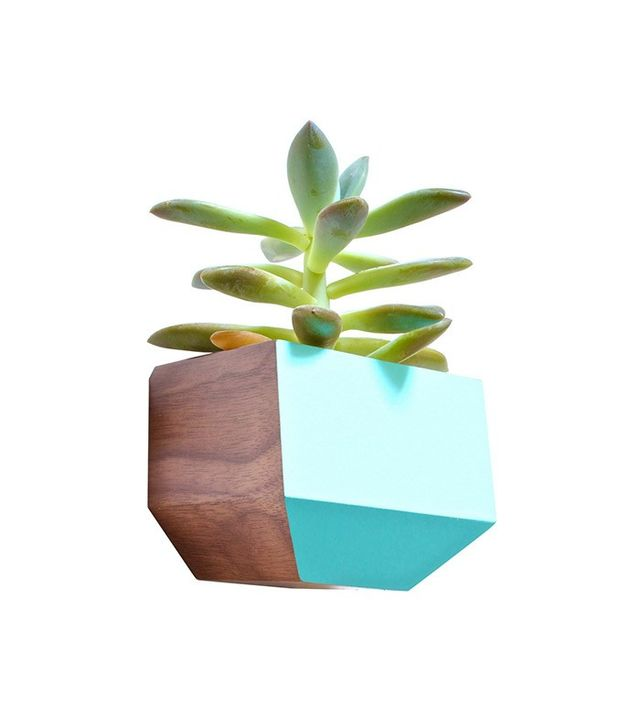 Dot & Bo Succulent Sidecar Planter