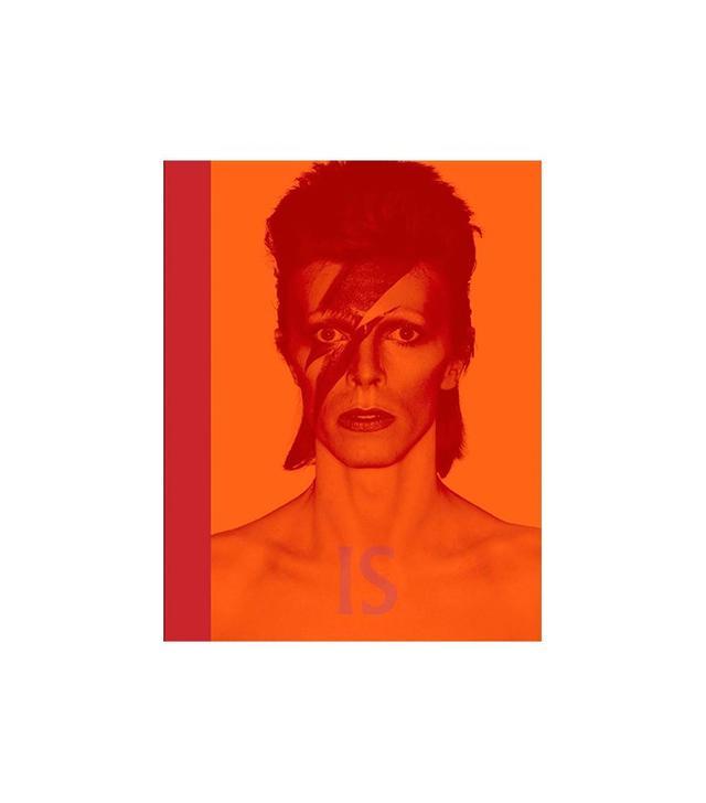 David Bowie Is…