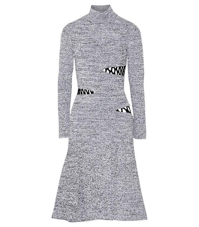 Proenza Schouler Cutout Turtleneck Dress
