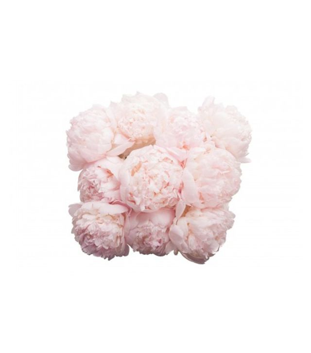 Flower Muse Blush Peony Bouquet