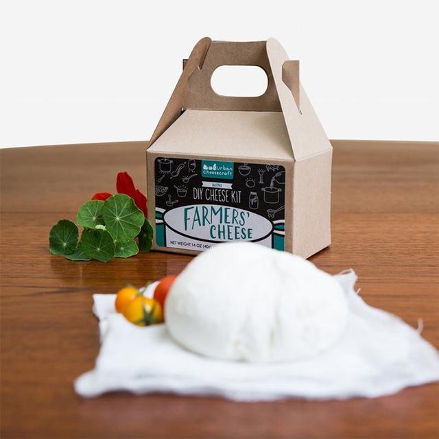 Urban Cheesecraft Mini DIY Farmers' Cheese Kit