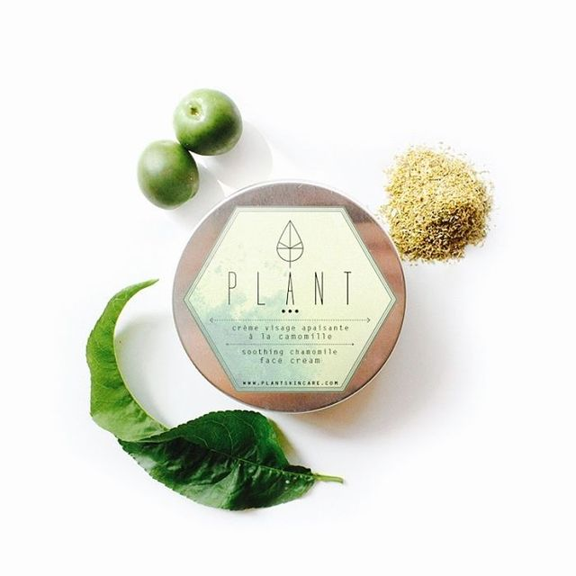 Plant Soothing Chamomile Face Cream
