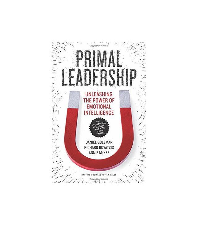 Primal Leadership by Daniel Goleman and Annie McKee