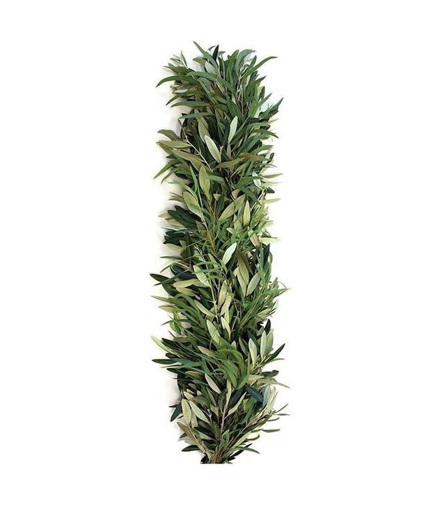 One Kings Lane 6' Olive & Eucalyptus Garland, Dried