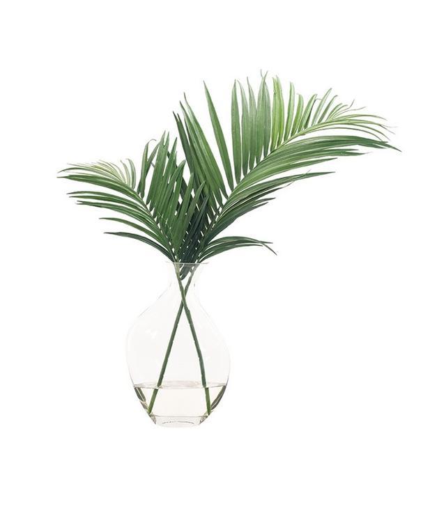 NDI Palm Leaves