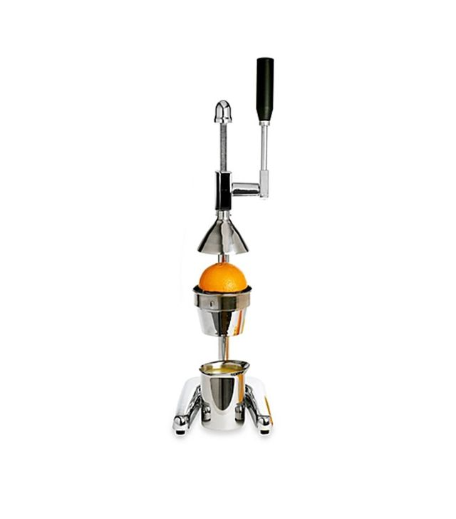 Bed Bath and Beyond Rabbit Citrus Power Juicer