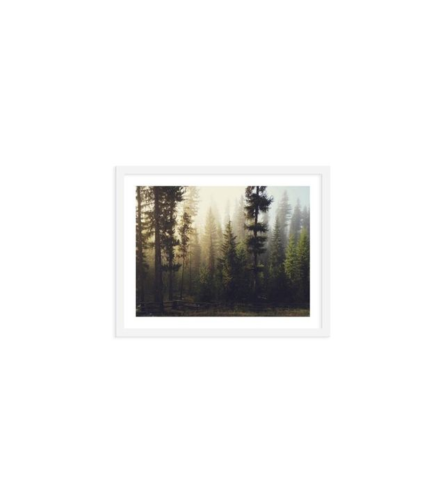 Kevin Russ Sunrise Forest Photographic Print