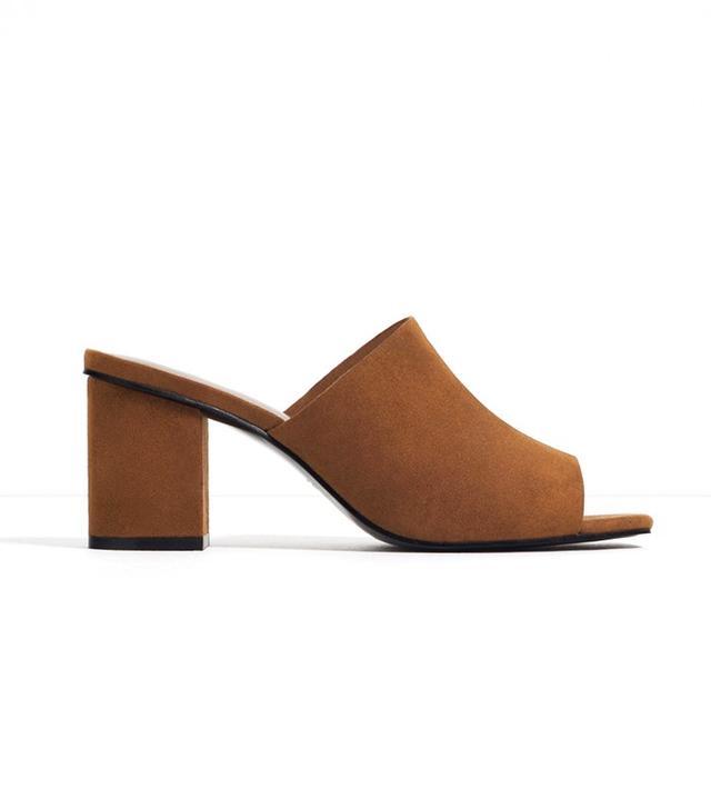 Zara Mule Sandals