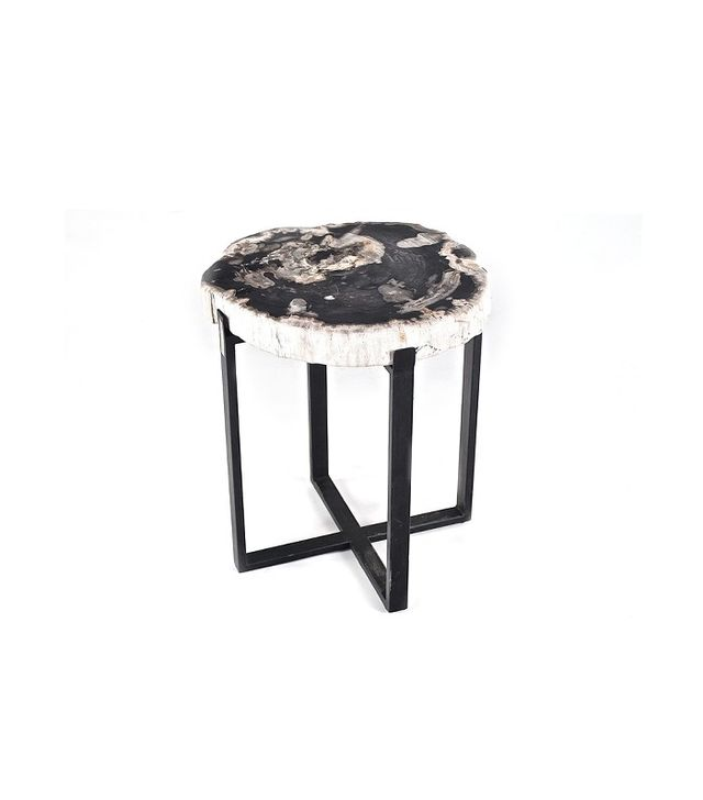 Petrified Wood and Iron End Table