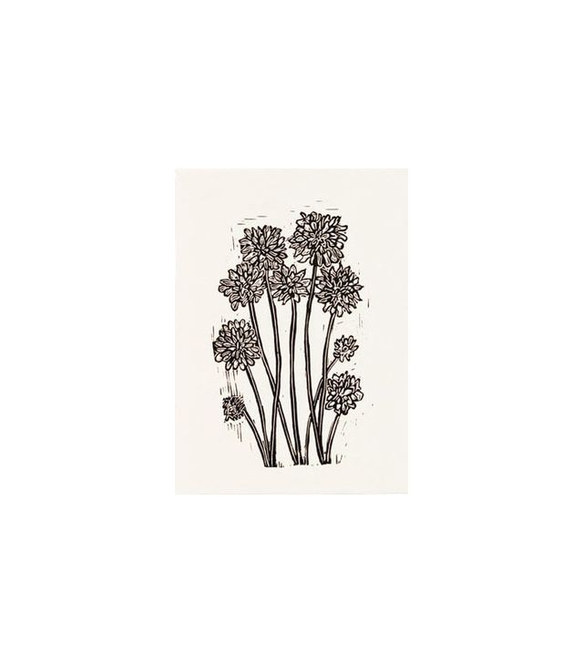 Chrysanthemum Print by Hugo Guinness