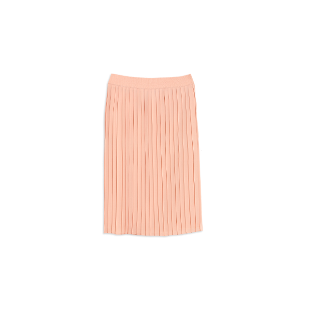 Who What Wear Pleated Skirt