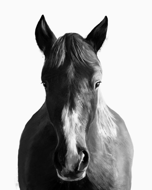 Amy Hamilton for Society 6 Horse Art Print