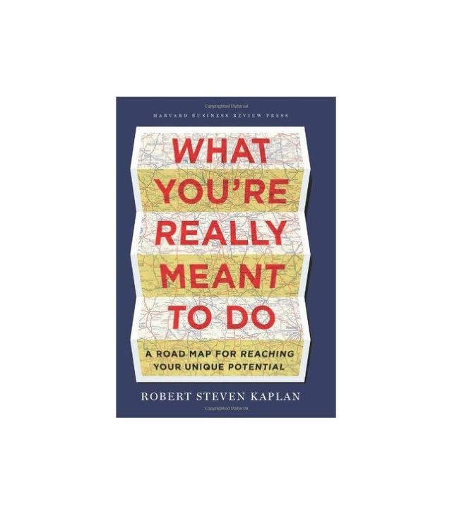 What You're Really Meant to Do by Robert Steve Kaplan