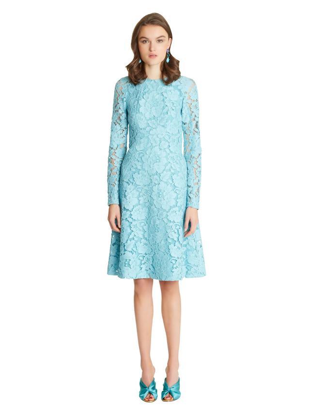 Oscar de la Renta Corded Rose Lace Dress