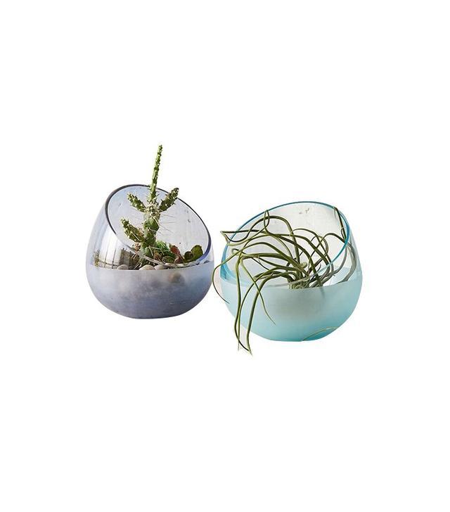 Urban Outfitters Glasbruk Glass Terrarium