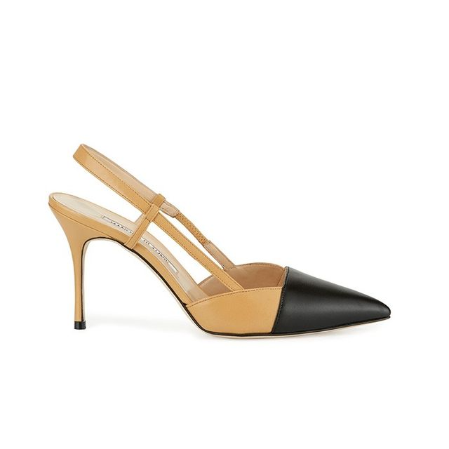 Manolo Blahnik Evocity Two-Tone Pointed-Toe Pump