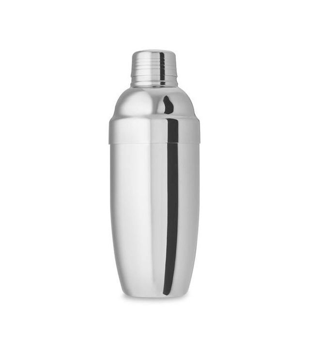 Williams-Sonoma Insulated Cocktail Shaker