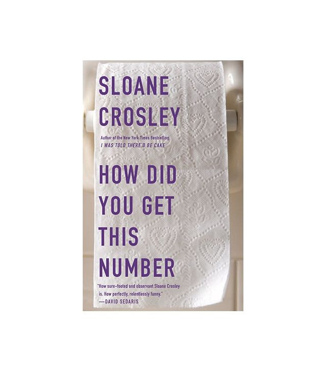 How Did You Get This Number by Sloan Crosley