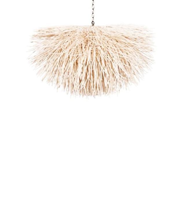 Coup d'Etat Sea Urchin Pendant