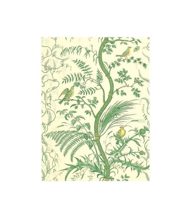 Brunschwig & Fils Bird and Thistle Wallpaper