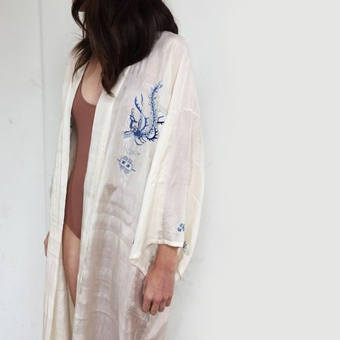 Silk Dragon Robe