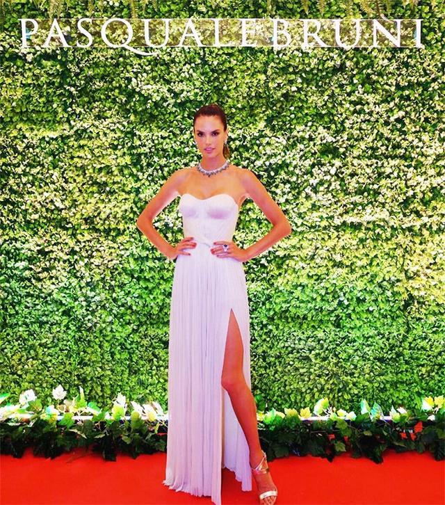 On Alessandra Ambrosio: Maria Lucia Hohan Alaia Dress.
