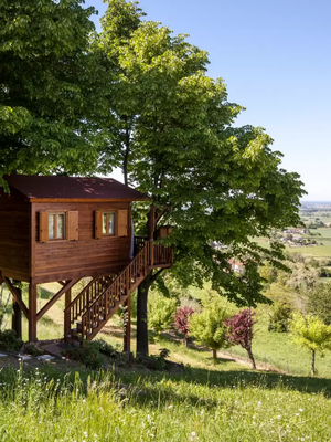 These Treehouse Airbnbs Will Give You a Serious Case of Nostalgia