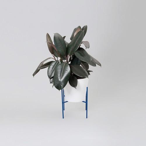 Emma Sadie Thomson Table Plant Stand