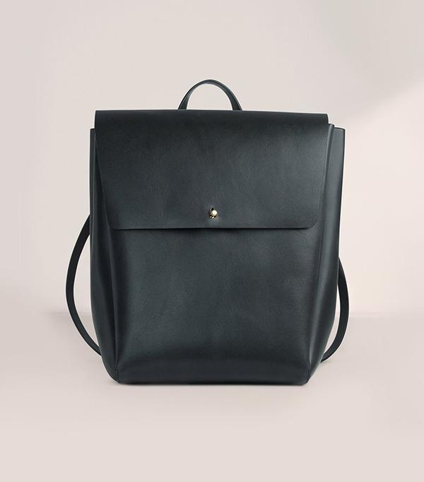 Aritzia De Bray Backpack