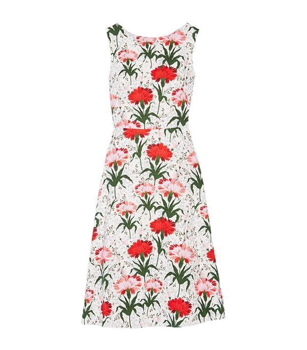 Erdem Maia Floral-Print Dress
