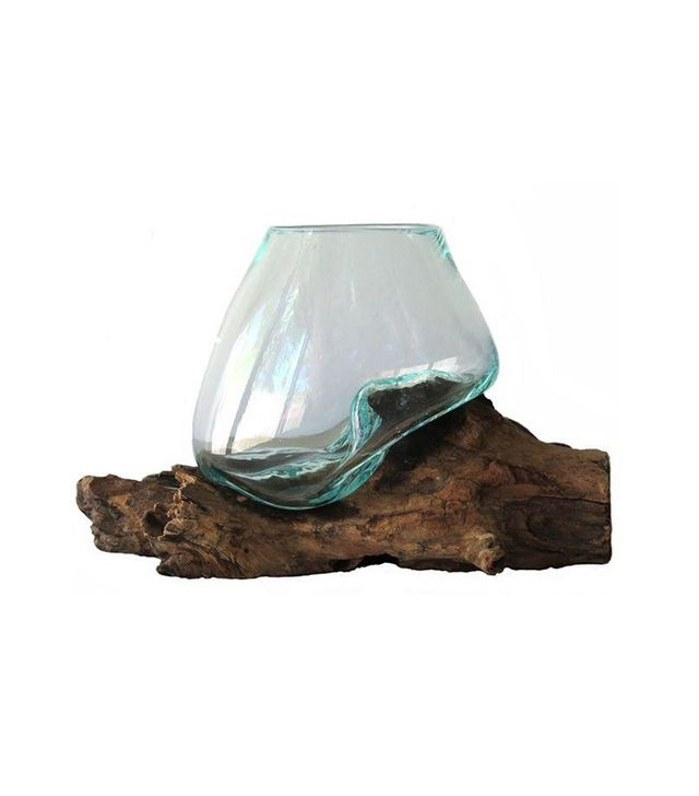 Boulder Blue Glass on Teak Driftwood Terrarium
