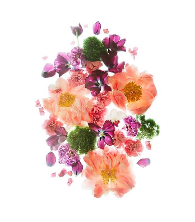 Wiff Harmer Flowers 1 Photograph