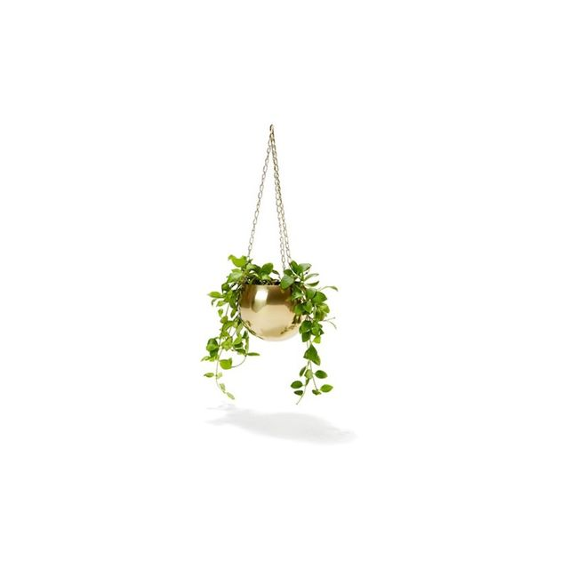 Kmart Brass Plated Hanging Planter