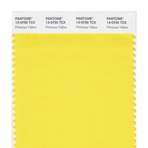 Smart Swatch 13-0755 Primrose Yellow